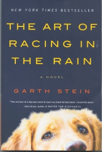 racing-in-the-rain