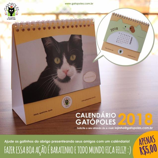 calendário da gatópoles